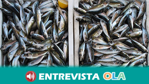Europa está sobreexplotando los recursos pesqueros de terceros países más empobrecidos después de haber esquilmado los propios durante años