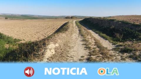 El nuevo Plan de Caminos Rurales mejorará las infraestructuras agrarias en Andalucía