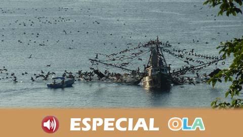 La Unión Europea vota un Plan para la regulación de la pesca de arrastre