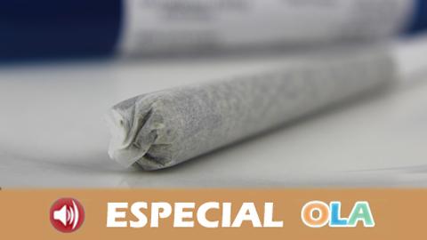 Activa Tus Sentidos 'Premios Vida Sana y Cannabis' (Audiovisual 01)