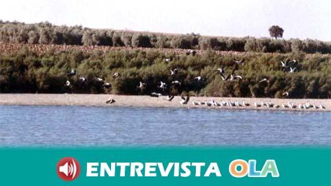 La Reserva Natural Complejo Endorreico de La Lantejuela, en Sevilla, es un punto clave para el proceso migratorio de las aves