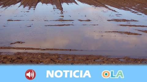 El Gobierno andaluz aprueba liberar 75 millones de euros en ayudas urgentes para paliar los daños del temporal