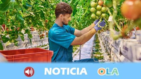 El sector agrícola almeriense pide ayudas urgentes tras los efectos del temporal