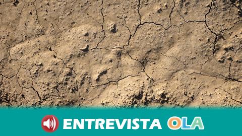 Agricultores sevillanos advierten de los peligros de la sequía para el sector y el consumo humano