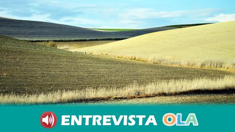 El sector primario pide agilizar las ayudas europeas y acceder al almacenamiento privado de aceite de oliva