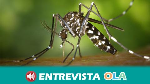 Paraguay activa la alerta sanitaria por el virus del dengue en un contexto en el que la política de salud del país es deficiente y percibe tan solo el 3% del presupuesto