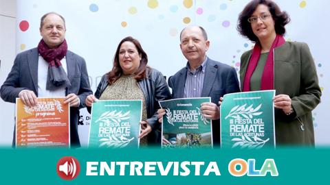 Doña Mencía acoge la III Fiesta del Remate de la Aceituna para conmemorar las largas campañas del olivar en el pasado