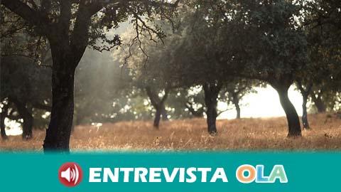 La provincia de Jaén sirve como plató inmejorable para el rodaje de dos nuevos proyectos cinematográficos