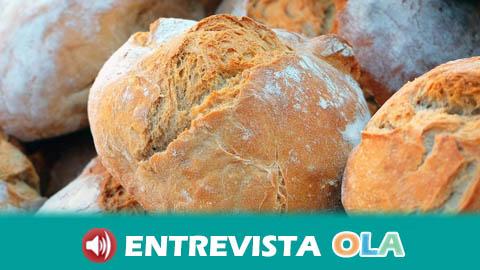 La tradición panadera de Alcalá de Guadaíra se muestra en la antigua Harinera del Guadaíra a través de visitas y talleres educativos