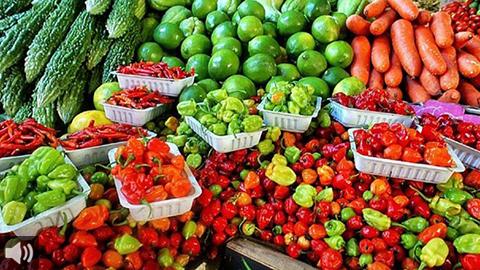 La Red Agroecológica de Granada mapea espacios con puntos de venta de alimentos ecológicos y de proximidad
