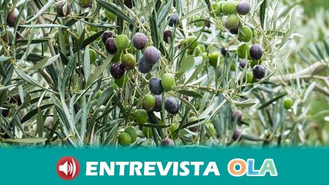 La Fundación Lumière promueve el programa «Todos contra el Coronavirus» y crea un olivar solidario en la localidad jiennense de San Vicente de Mogón para su apadrinamiento