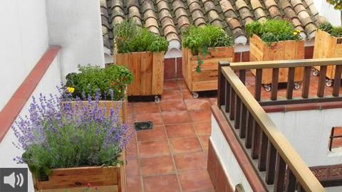 El proyecto Urban Green Club aúna tradición e innovación para fomentar huertos urbanos en pequeños módulos en azoteas y terrazas
