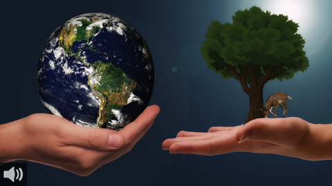 Las nuevas tecnologías son clave para revitalizar el medio rural bajo el criterio de sostenibilidad y protección del entorno natural