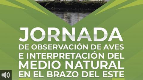 La Jornada de Interpretación de Aves de Los Palacios y Villafranca pone en valor la flora y fauna del Paraje Natural del Brazo del Este