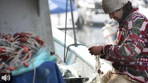 El sector pesquero afronta los retos del relevo generacional y la competencia desleal por la falta de regulación europea