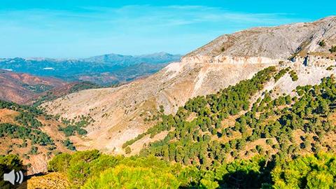 Andalucía celebra el 25 aniversario del reconocimiento de la Sierra de las Nieves como Reserva de la Biosfera por parte de la UNESCO