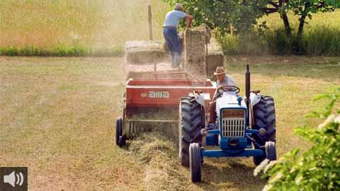 El mundo rural es fundamental para la vida en las grandes ciudades y ayuda a salir de la crisis de manera sostenible