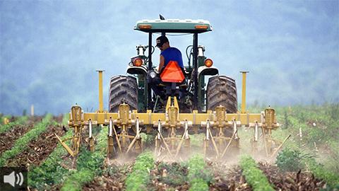 Las organizaciones agrarias esperan equidad en el reparto de los fondos de la Política Agraria Común para el período 2021-2027 tras aprobarse un recorte del 10%