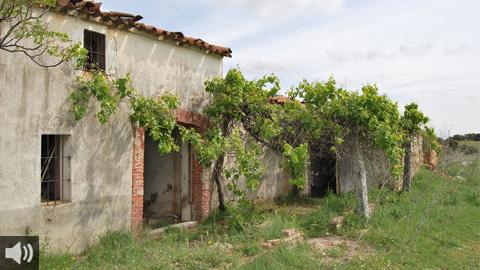 El municipio cordobés de Alcaracejos, puerta de la Comarca de los Pedroches, destaca por su legado árabe, las fachadas blancas y la variedad de paisajes