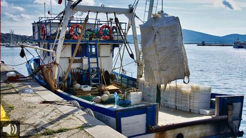 El sector pesquero denuncia que la normativa europea para la pesca de arrastre en el Mediterráneo no garantiza su viabilidad económica