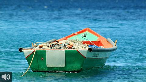 El sector pesquero del Golfo de Cádiz trabaja junto a la comunidad científica en superar los retos de la pesca desde la sostenibilidad y optimización de los recursos