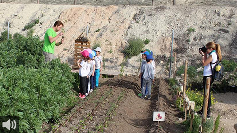 Los colectivos ecologistas temen que el proyecto Parque Europa de Lucena pueda suponer el desmantelamiento del actual huerto social del municipio cordobés