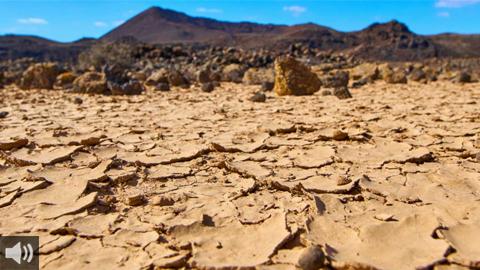 La actividad industrial y el modelo económico actual son compatibles con medidas para contener la desertificación y sus consecuencias sobre la salud pública