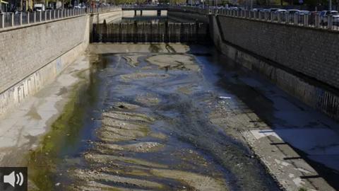 La renaturalización de los cauces de los ríos andaluces ayuda a recuperar la biodiversidad y frenar las alteraciones por la acción humana