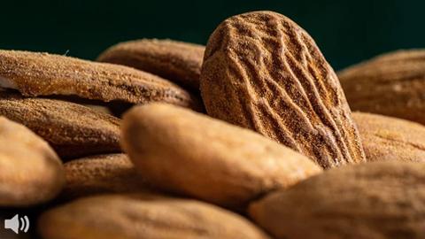 Comienza la recolección del almendro con una previsión del 58% de aumento en la producción del fruto seco en la provincia de Córdoba