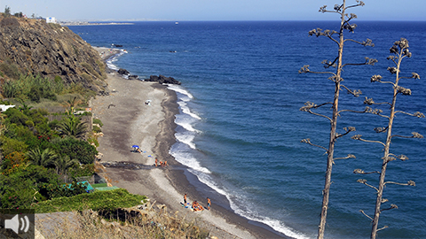 'La Costa de Almería' consolida sus paisajes, gastronomía e historia fuera de nuestras fronteras como destino turístico imprescindible