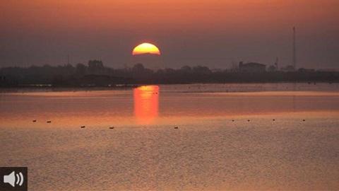 La Mesa de la Ría de Huelva aborda el problema de los fosfoyesos con el Ministerio de Transición Ecológica para erradicar su impacto en el medio ambiente y en la salud pública