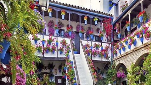 Los patios de Córdoba preparan su puesta de largo para el mes de octubre y prometen ofrecer su belleza icónica también en otoño