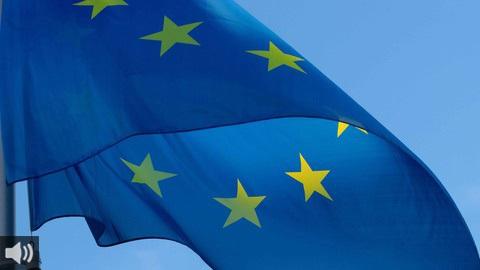 'Una Europa más fuerte en el mundo en la era de la COVID-19' llega a la Línea de la Concepción para abordar las distintas aristas del futuro comunitario
