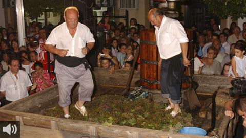 La Fiesta de la Vendimia de Montilla cumple 65 años y rinde homenaje a la sanidad pública nombrando como Capataz de Honor al Centro de Salud de la localidad