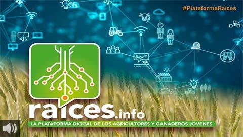 La plataforma digital colaborativa 'Raíces' tiene como objetivo facilitar el intercambio de información en el sector agrario, promover el relevo generacional y luchar contra la despoblación