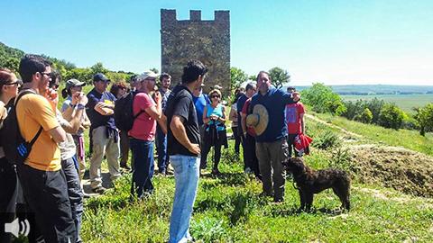 La Asociación Medio Ambiental Zingrin nació hace seis años en el municipio de Carmona para abordar procesos de reforestación urbana y realizar rutas de senderismo