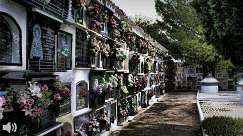 Los cementerios andaluces se preparan para la festividad de Todos los Santos