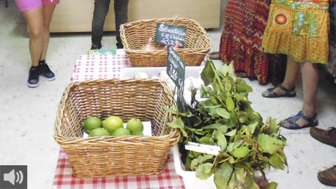 ECOSIT es el modelo de empresa de economía circular de servicio de cocina de Residuo 0