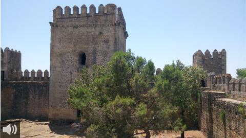 La asociación Patrimonio Histórico y Cultural de El Coronil se vale del voluntariado para la defensa del territorio
