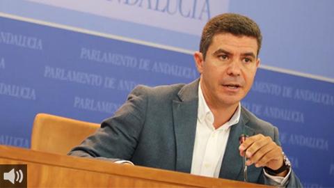 'Estamos en un momento en el que necesitamos la unión de las fuerzas políticas', Sergio Romero, portavoz del grupo Ciudadanos en el Parlamento de Andalucía