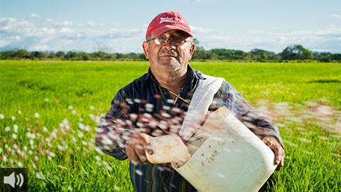 El Grupo de Expertos Andaluces por la Política Agraria Común analiza el modelo para Andalucía