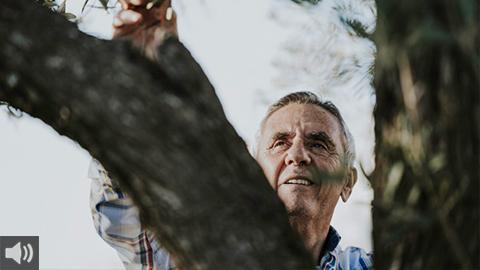 Las residencias de mayores siguen estando en el centro del debate entre las organizaciones de personas mayores y la Junta de Andalucía