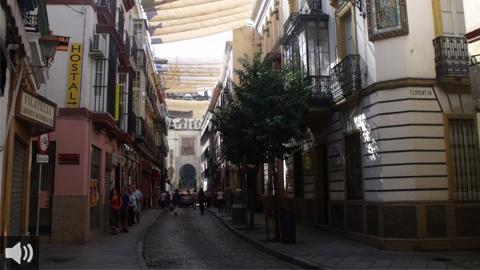 Las Asociaciones de Comerciantes de los Cascos Históricos de España solicitan al Gobierno alargar la carencia de los créditos avalados por el ICO