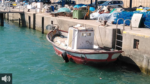 El sector pesquero andaluz destaca la apuesta de la Junta de Andalucía al incrementar las ayudas un 28% con respecto a 2019