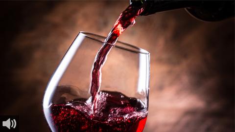 El vino Terralba Ecológico de Cooperativa Albarizas, ganador de Ecoracimo 2020