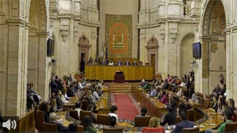 El Tribunal Constitucional admite a trámite el recurso del PSOE-A por la convalidación del decreto de simplificación en Diputación Permanente