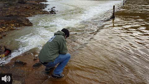 Los colectivos ecologistas abogan por evaluar todo el ciclo de vida de los embalses, incluidos los costes de recuperación del ecosistema tras su desmantelamiento