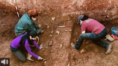 La fosa común de Nerva, la más grande de la Andalucía rural, vuelve a ser objeto de los trabajos de exhumación para recuperar los restos de más de una veintena de víctimas de la represión franquista