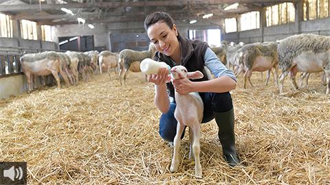 'Las mujeres rurales también son las ganaderas, las viticultoras o las pescadoras, todas ellas aún más invisibilizadas que las agricultoras', Mercedes Murillo, Fundación Savia