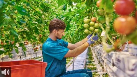Las movilizaciones agrarias se trasladan a varios puntos de Andalucía en repulsa a la convergencia brusca de la Política Agraria Común